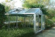 Senior Greenhouse