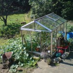 Senior Hobby 2.36m x 3.1m in veg patch